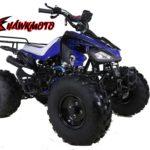 Hawkmoto Interceptor 125cc Kids Quad Bike 3 Speed – Blue