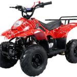 Hawkmoto 110cc Boulder Kids Quad Bike – Venom Red
