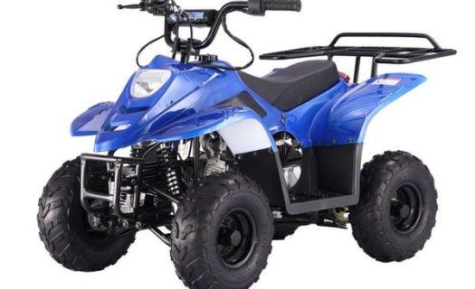 Big Foot 110CC Quad – Metallic Blue