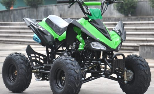 Hawkmoto Interceptor 125Cc Kids Quad Bike 3 Speed – Green