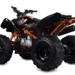 Stomp Kayo Raging Bull 125cc Kids Quad Bike !