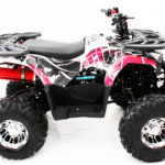 Hawkmoto 2020 Enforcer 125cc Kids Quad Bike