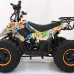 Hawkmoto Boulder 110cc Kids Quad – Graffiti New