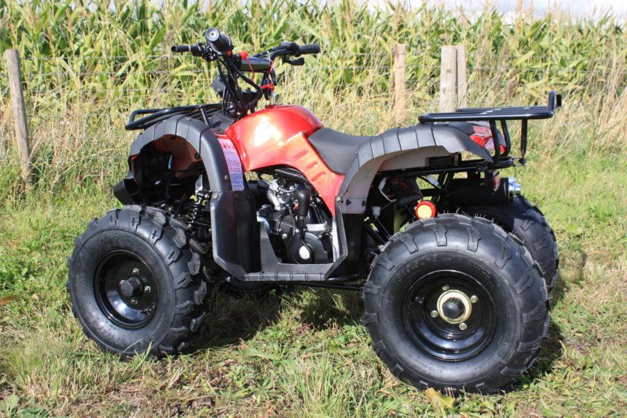 Hawkmoto Force Kids Quad Bike 125cc – Metallic Red