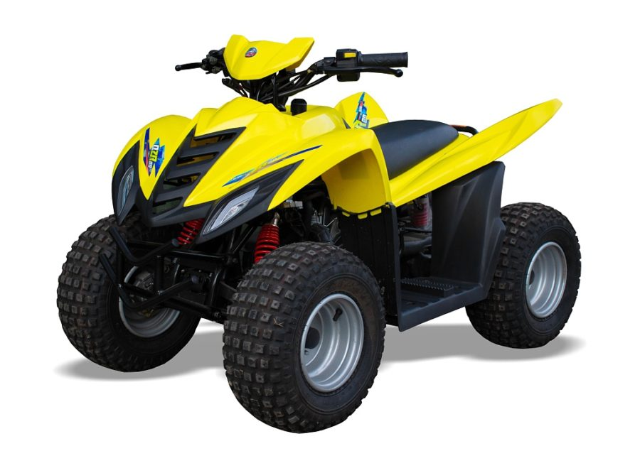 Quadzilla Qzr80 80cc 2 Stroke Kids Quad – 2 Year Warranty